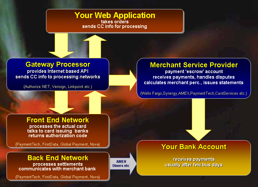 Credit Card Electronic Payment Processing with ASP NET